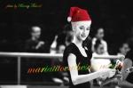 Maria Titova the Swan-FBbanner-Xmas 2014