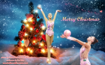 Maria Titova the Swan-Wall-Merry Christmas 2014-01