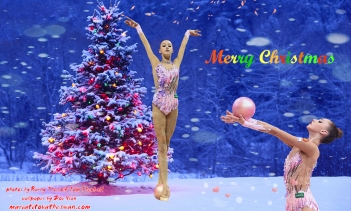 Maria Titova the Swan-Wall-Merry Christmas 2014-03